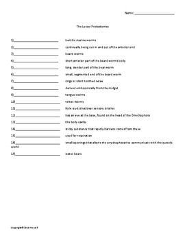 The Lesser Protostomes Vocabulary Quiz or Worksheet for Zoology
