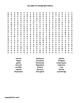 The Lesser Protostomes Vocabulary Word Search for Zoology