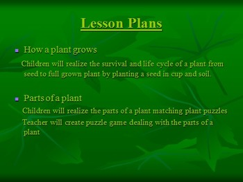 The Life Cycle Of Plants