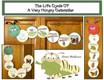 The Life Cycle Of The Butterfly Featuring The Very Hungry Caterpillar