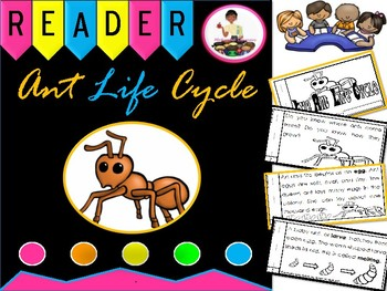 The Life Cycle of An Ant Emergent Reader and Activity Parts of an Ant