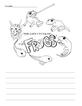 The Life Cycle of Frogs --FREE--
