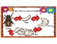 The Life Cycle of Honey Bees
