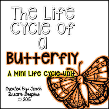 The Life Cycle of a Butterfly