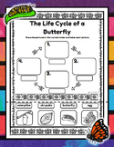 The Life Cycle of a Butterfly - Cut and Paste Activity
