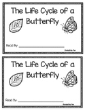 The Life Cycle of a Butterfly Emergent Reader