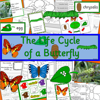 The Life Cycle of a Butterfly- Spring, caterpillar