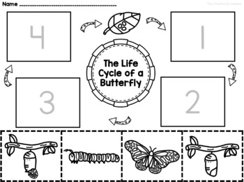 photo relating to Butterfly Life Cycle Printable Book called The Lifetime Cycle of a Butterfly printable mini e-book, worksheets, playing cards