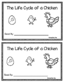 The Life Cycle of a Chicken Emergent Reader