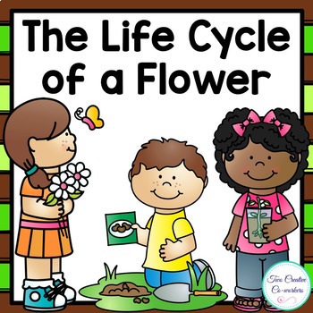 The Life Cycle of a Flower {printable mini book, worksheets, & cards}