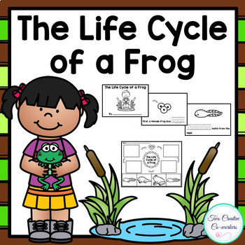 The Life Cycle of a Frog {printable mini book, worksheets, & cards}