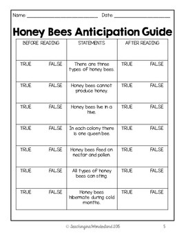 The Life Cycle of a Honey Bee Activity Packet