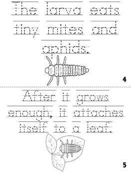 """""""The Life-Cycle of a Ladybug"""" Cut, Trace & Color Printable Book!"""