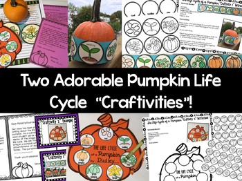 Pumpkin Life Cycle Writing