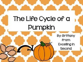 The Life Cycle of a Pumpkin QR Codes