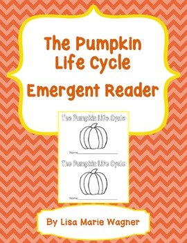 The Pumpkin Life Cycle