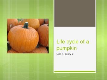 The Life Cycle of a Pumpkin, Reading Street