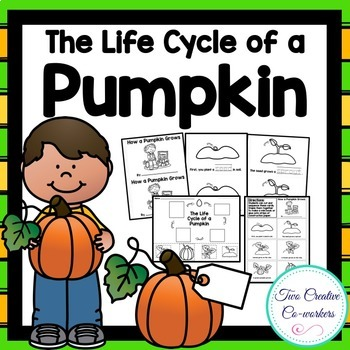 Life Cycle of a Pumpkin {printable mini book, worksheets,
