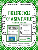 The Life Cycle of a Sea Turtle Mini Unit