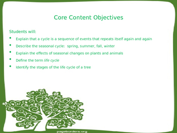 The Life Cycle of a Tree