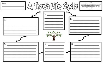 The Life Cycle of a Tree Sentence Frames