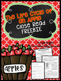 The Life Cycle of an Apple {A Close Read FREEBIE}