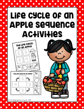 The Life Cycle of an Apple Sequence