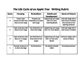 The Life Cycle of an apple tree informative Writing Rubric