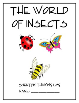 Life Cycle and Insects