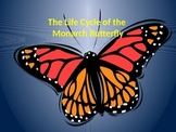 The Life Cycle of the Monarch Butterfly-Power Point with o