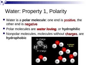 The Life Supporting Properties of Water