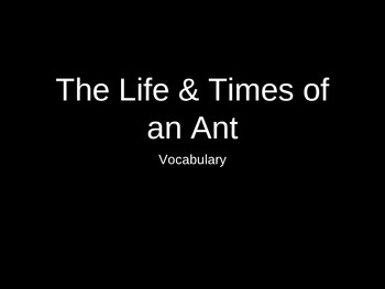 The Life and Times of the Ant - Treasures Unit 4 Vocabulary