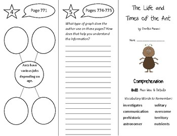 The Life and Times of the Ant Trifold - Treasures 4th Grad
