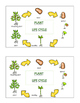 Plants Life Cycle Emergent Reader Cut and Paste Activities Book For Plants Unit