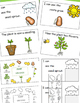 Plants Life Cycle, Emergent Reader, Cut and Paste Activities Book