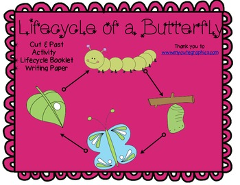 The Lifecycle of a Butterfly