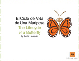 bilingual spanish lifecycle of a butterfly posters