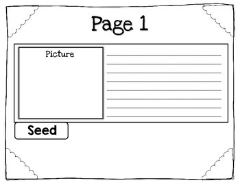 The Lifecycle of a Plant Flip Book