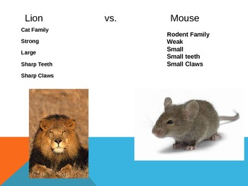The Lion and the Mouse Power Point