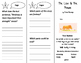 The Lion and the Mouse Trifold - Imagine It 2nd Grade Unit
