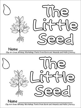 The Little Seed- Plant Life Cycle Emergent Reader for ...