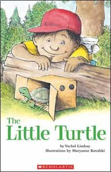 The Little Turtle Guided Reading support