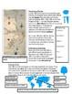 Roanoke, The Lost Colony Mystery. ESL Social Studies. Vocab. Activities. Fun.
