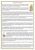 The Magic Easter Egg Hunt - Reading Comprehension Worksheet / Story