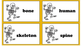 The Magic School Bus Fixes a Bone - Book Study