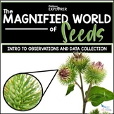 The Magnified World of Seeds - Elementary Science Inquiry