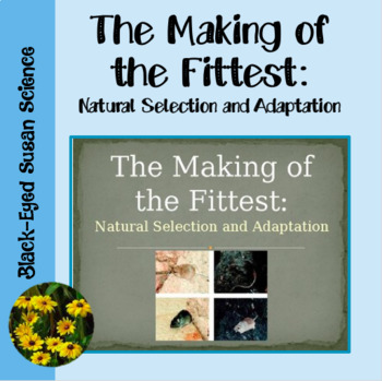 The Making of the Fittest:  Natural Selection and Adaptation