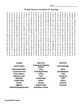 The Male Reproductive System Vocabulary Word Search for Ph