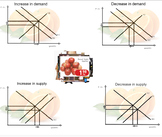 The Supply and Demand for Oranges - Smart Notebook Activity