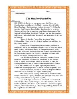 The Meadow Dandelion